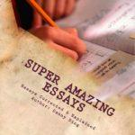 Super Amazing Essays Review
