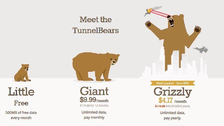 Does TunnelBear Work - business english success - tunnel bear costs